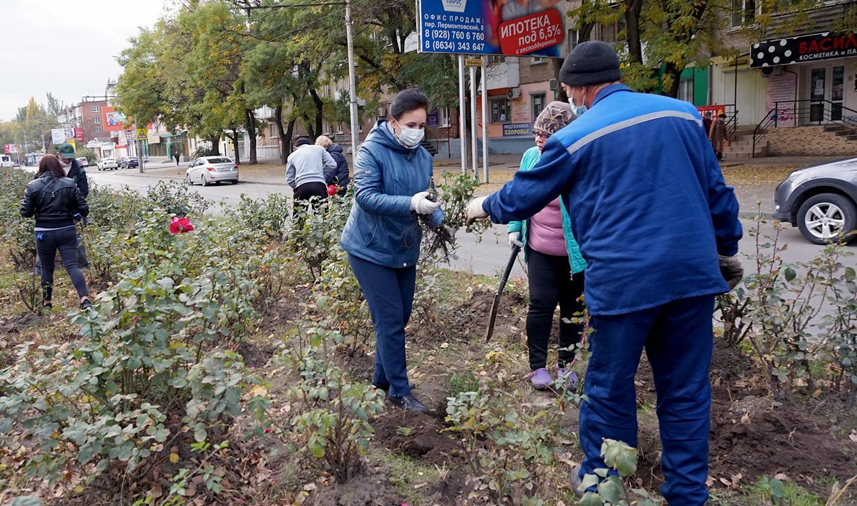 На улице Дзержинского таганрожцы сажали розы