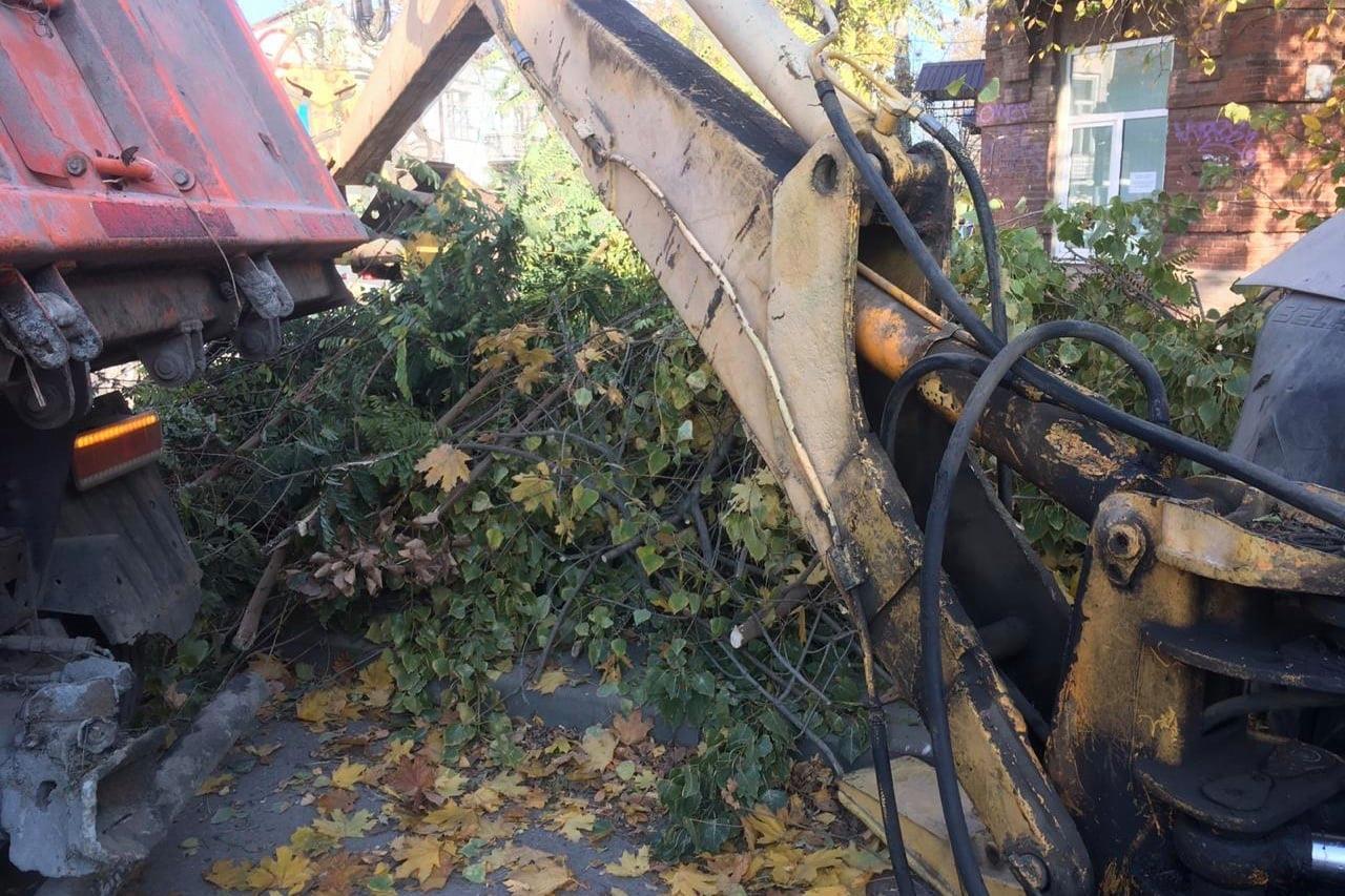 В Таганроге обрезали ветки на пяти улицах