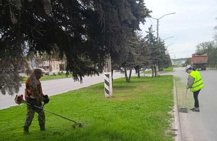На улицах Таганрога ведется покос травы