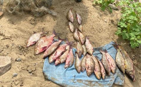 Двух браконьеров задержали в порту Калач-на-Дону