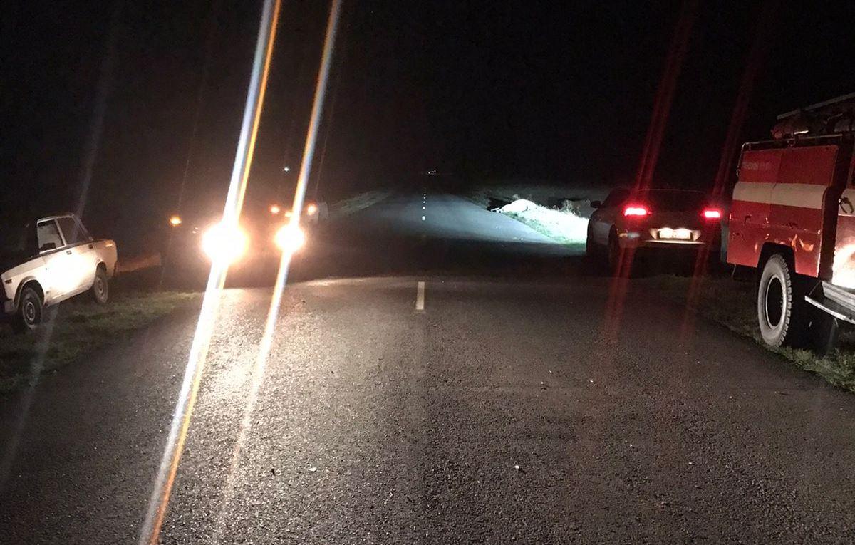 Пассажир погиб: на трассе автомобиль врезался в лошадь