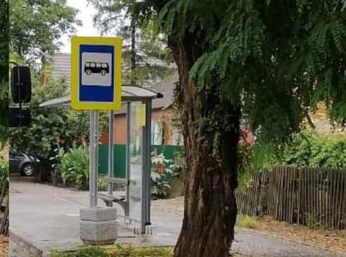 В Таганроге продолжается обрезка деревьев