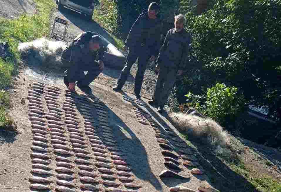 На Дону задержали браконьера с крупным уловом