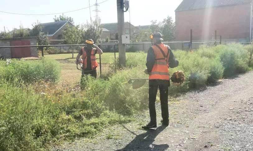 В Таганроге планируют покос травы на пяти улицах