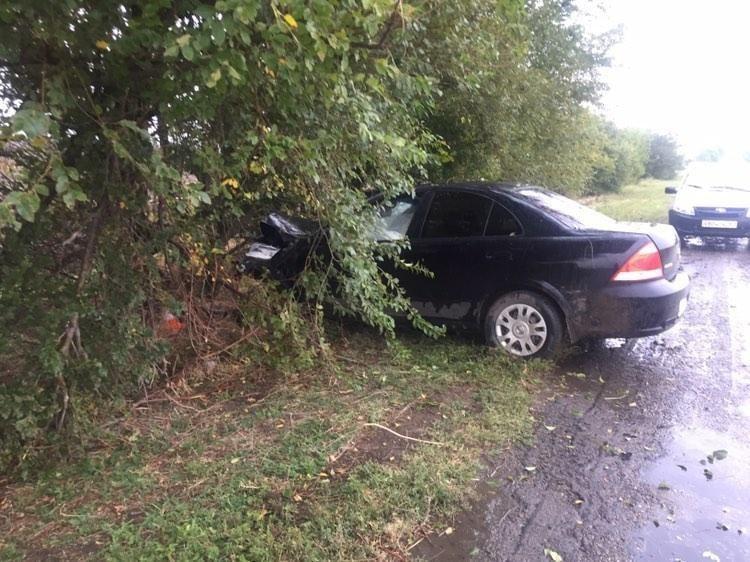 На донской трассе автомобиль врезался в дерево