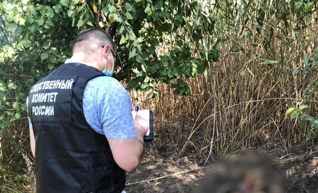На Дону раскрыли жестокое убийство женщины в лесополосе