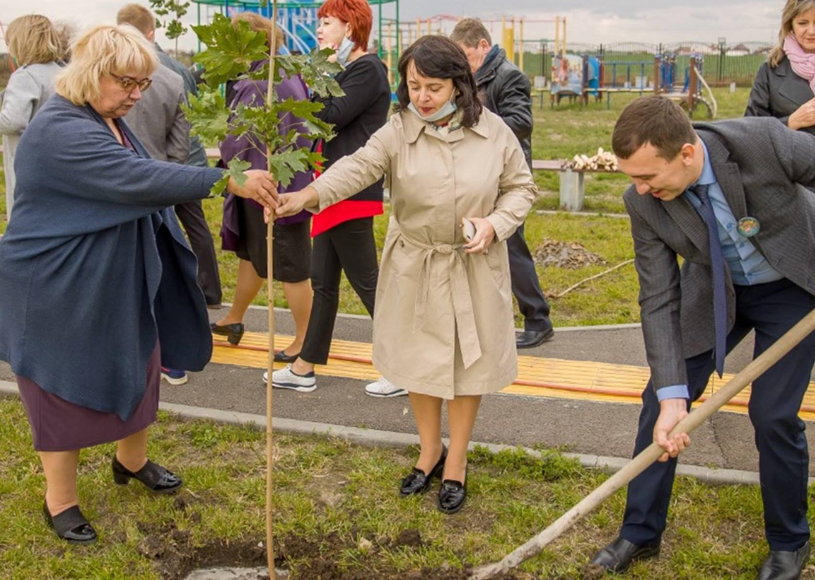 В Таганроге появилась «Учительская аллея»