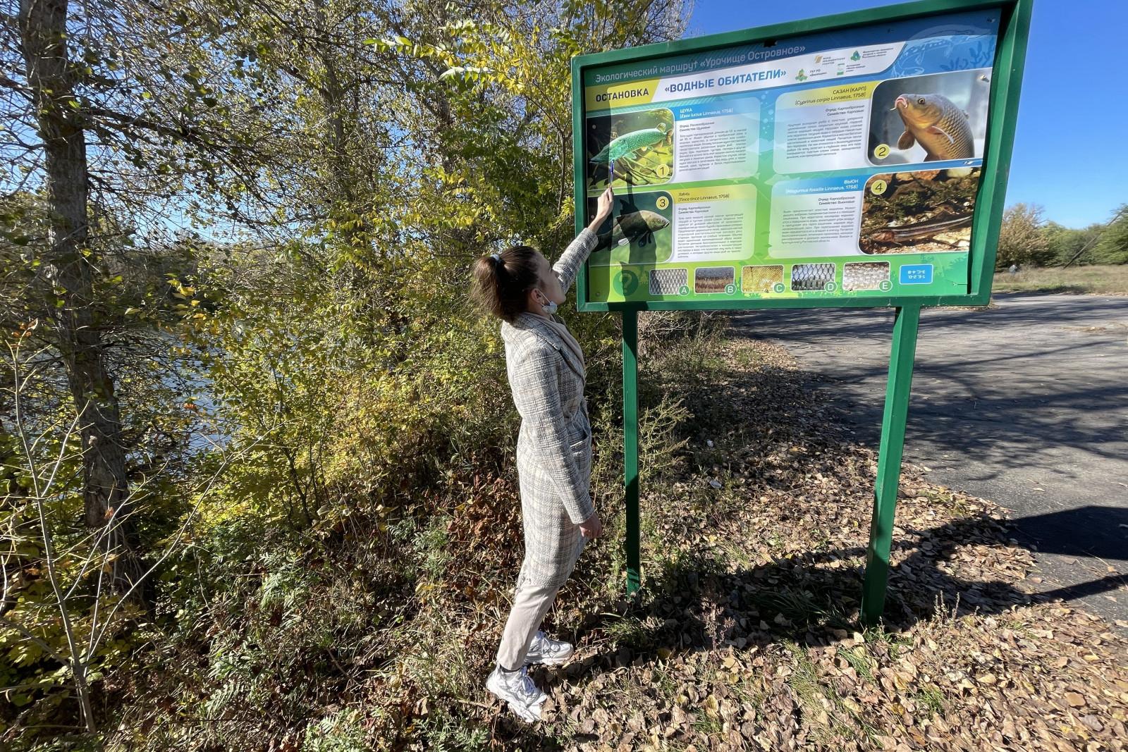 Растения и животные: на Дону открыт новый экомаршрут