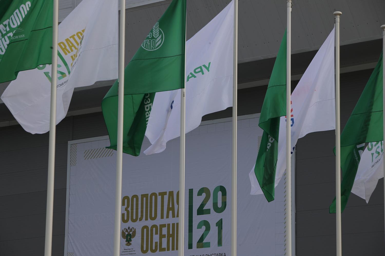 Василий Голубев и глава РСХБ обсудили дальнейшее сотрудничество